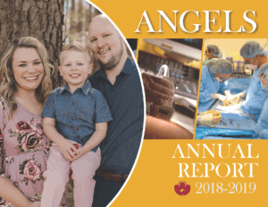 Angel's Annual Report